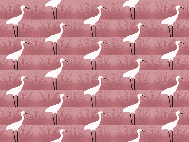 FLAMINGO BRANCHES